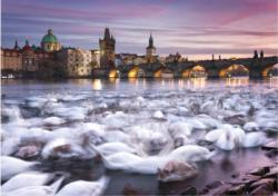 Prague: Swans - Scratch and Dent Lakes / Rivers / Streams Jigsaw Puzzle