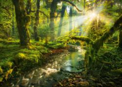 Spirit Garden Lakes / Rivers / Streams Jigsaw Puzzle