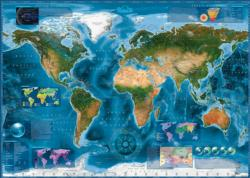 Satellite Map Maps Jigsaw Puzzle