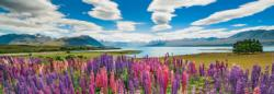 Lake Tekapo Lakes / Rivers / Streams Panoramic Puzzle
