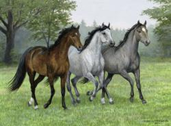 Wild Trifecta Horses Large Piece