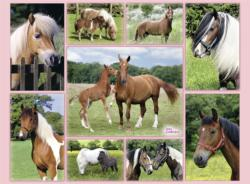 Horse Heaven Pattern / Assortment Jigsaw Puzzle
