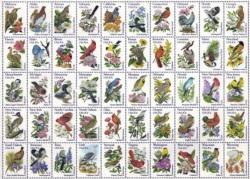 50 Bird Stamps Collage Large Piece