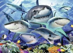 Smiling Sharks Marine Life Large Piece