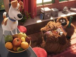 Secret Life of Pets Movies / Books / TV Jigsaw Puzzle