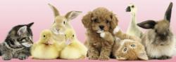 Animal Friends Bunnies Panoramic