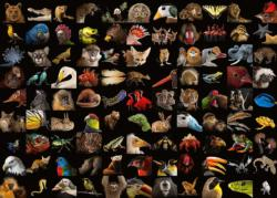 99 Stunning Animals National Geographic Photography Jigsaw Puzzle