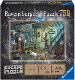 Forbidden Basement Domestic Scene Escape Puzzle