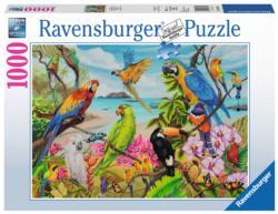 "The ""Coo""au Birds Jigsaw Puzzle"