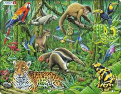 South American Rainforest South America Children's Puzzles