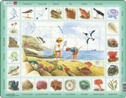 Seaside Puzzle Educational Children's Puzzles