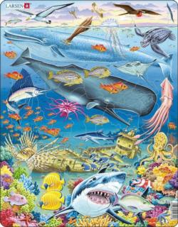 Whale Reef Under The Sea Children's Puzzles