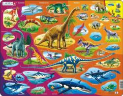 Nature History Nature Children's Puzzles