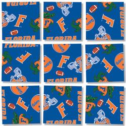 University of Florida Sports Children's Puzzles