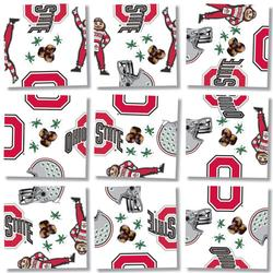 Ohio State University Sports Children's Puzzles