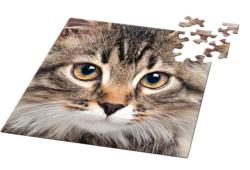 Animal 03 Cats Miniature Puzzle