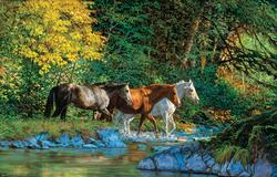 Bear Creek Crossing Horses Jigsaw Puzzle