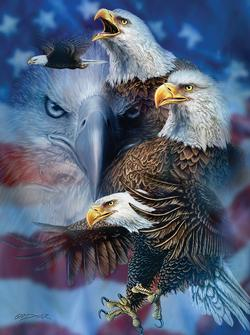 Patriotic Eagles - Scratch and Dent Military Jigsaw Puzzle