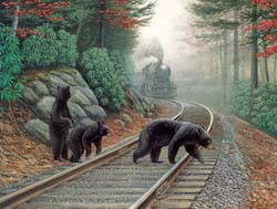 Bear Tracks Trains Jigsaw Puzzle