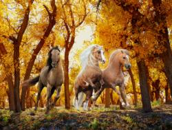 Forest Gallop Horses Large Piece