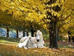 Autumn Treasure Horses Large Piece