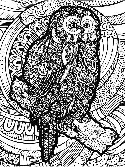Owl Birds Large Piece