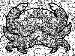 Crab Under The Sea Coloring Puzzle