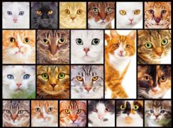 Cats (Collage Collection 1000) Collage Jigsaw Puzzle