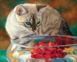 Red Rose (Fancy Cats 500) - Scratch and Dent Cats Jigsaw Puzzle