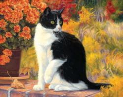 Looking Afar (Fancy Cats 500) Cats Jigsaw Puzzle