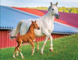 Mommy and Baby Farm Horses (Colorluxe 100) Horses Jigsaw Puzzle