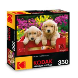 KODAK Premium Puzzles - Adorable Puppies Photography Jigsaw Puzzle