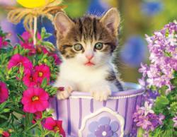 Tabby Kitten in the Garden Cats Jigsaw Puzzle