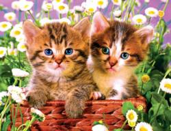 Cute Kitten Basket Cats Jigsaw Puzzle