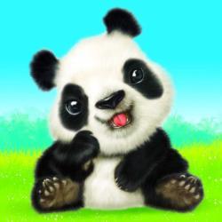 Animal Club Cube Baby Panda Cub Pandas Children's Puzzles