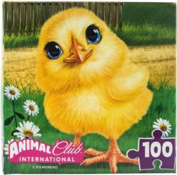 Animal Club Cube Baby Chick Birds Children's Puzzles