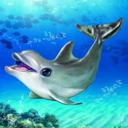 Animal Club Cube Dolphin Dolphins Children's Puzzles