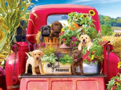 Stowaways Cars Jigsaw Puzzle
