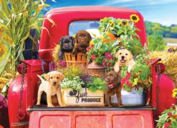 Home Country - Stowaways Dogs Jigsaw Puzzle