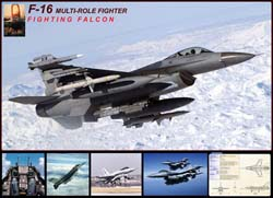 F-16 Fighting Falcon Military Jigsaw Puzzle