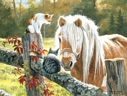 Just Visiting Horses Jigsaw Puzzle