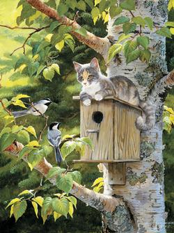 House Sitting Kittens Jigsaw Puzzle