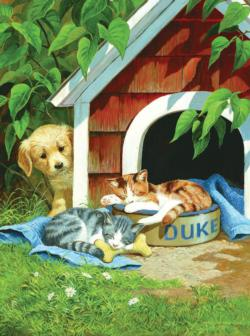 Caught Napping Kittens Jigsaw Puzzle