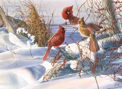 Birds of a Feather Snow Jigsaw Puzzle