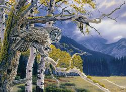 Great Grey Owl Wildlife Jigsaw Puzzle