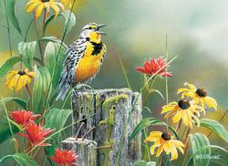 Meadowlark Morning Flowers Jigsaw Puzzle