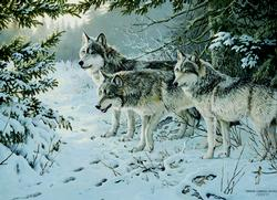 Wolf Trail Snow Jigsaw Puzzle
