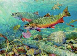 Trout Lakes / Rivers / Streams Jigsaw Puzzle