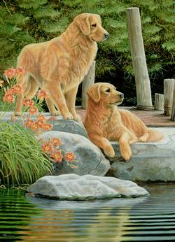 Companions Dogs Jigsaw Puzzle