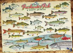 Freshwater Fish of North America Collage Jigsaw Puzzle